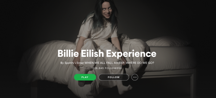 Billie Eilish Experience